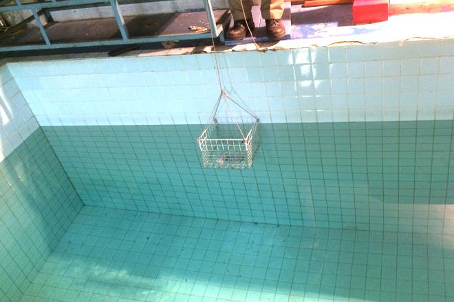 水深1.5メートルのプールに30分間沈めて防水度をチェック。